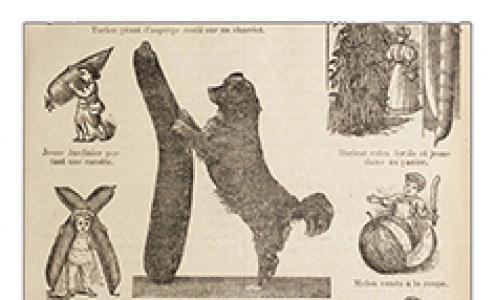 Détails de la page 25 du Lyon Horticole édité en 1909 par la Société Lyonnaise d'Horticulture.